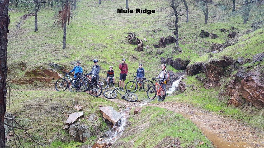 Mule Ridge