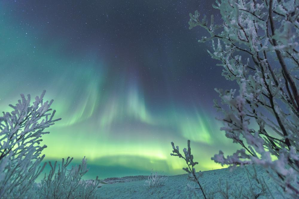 (SKJERM-NETT) Foto- Mads Suhr Pettersen-7786.jpg