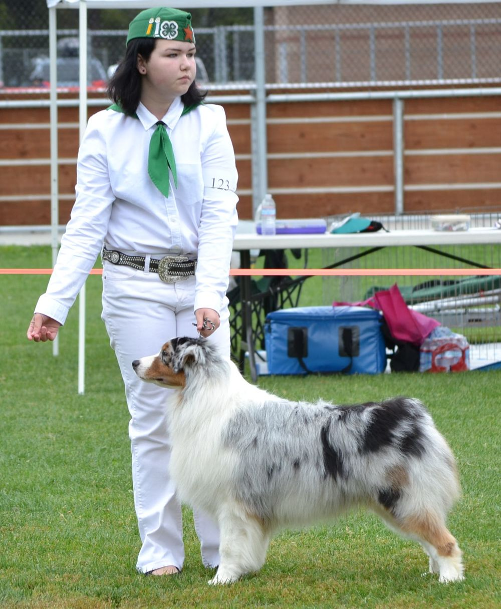 Tyson and I in the 4-H Best Showman class - April 2014