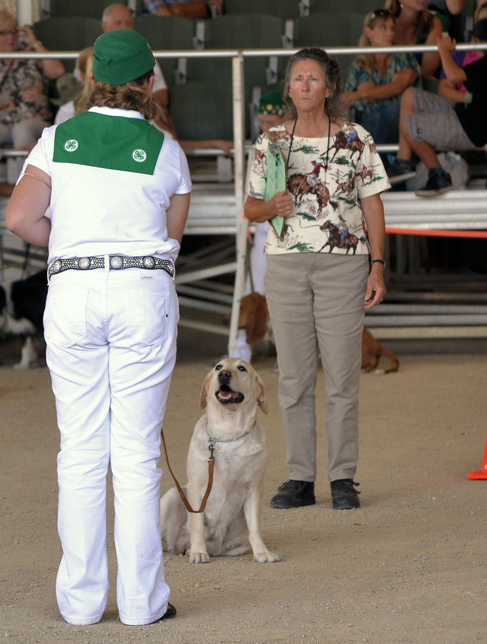 Mal & Rainy Obedience 2013 CA Mid State Fair D.jpg