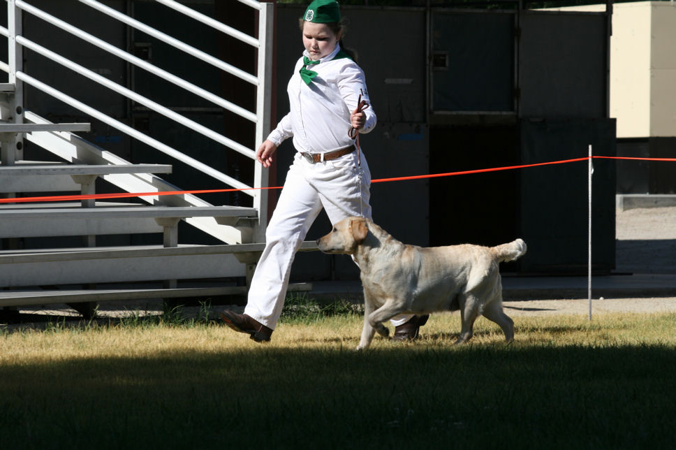 Mallori and Rainy - showmanship.jpg