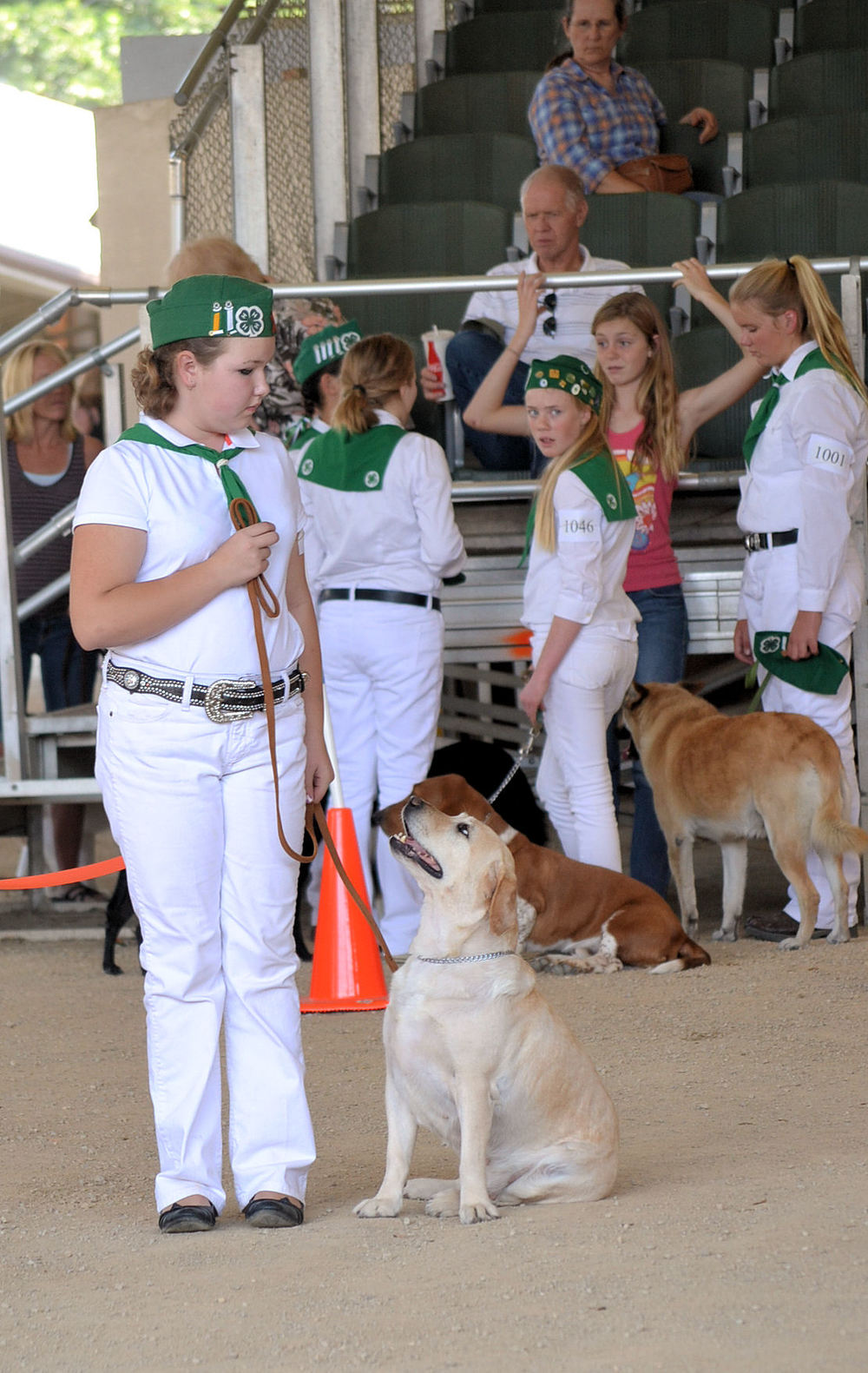 Msl and Rainy Obedience at the Ca Mid State Fair 2013.jpg