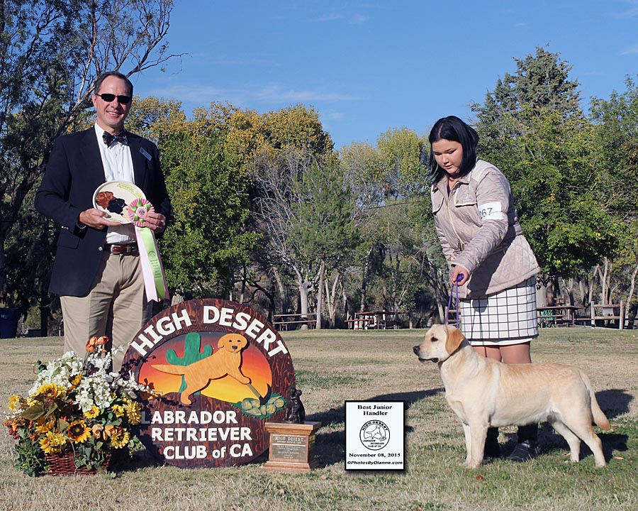 Cherie and Mallori - Best Junior Handler        High Desert Labrador Retriever Club - Acton, CA        Judge: Mr. James Bowron (Fortune Labradors)        November 08, 2015