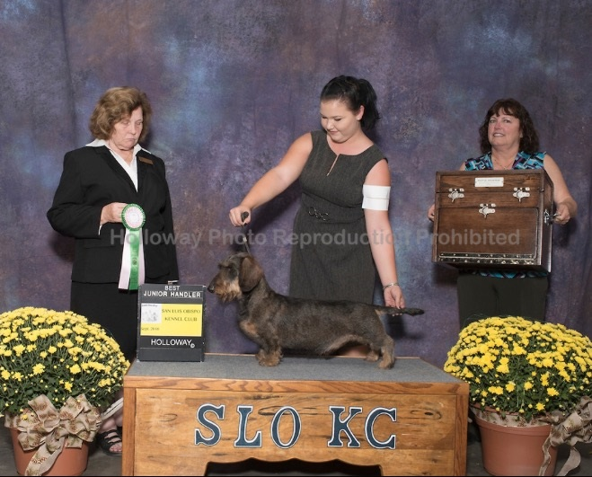 Best Junior Handler with Mallori San Luis Obispo Kennel Club - Paso Robles, CA Judge: Mrs. Donnelle Richards September 25, 2016