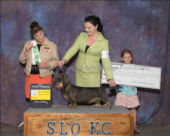 Best Junior Handler with Mallori San Luis Obispo Kennel Club - Paso Robles, CA Judge: Mrs. Joan Luna Liebes September 24, 2016