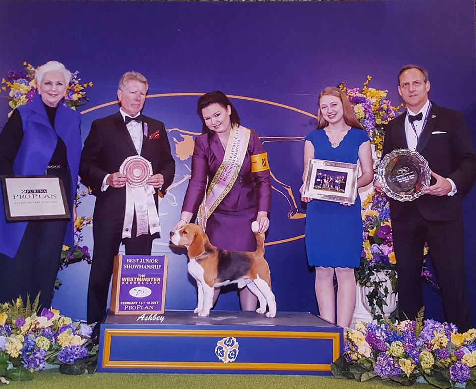 Miles and I - Best Junior Handler at the Westminster Kennel Club, February 2017. Judge is Mr. Steven Herman