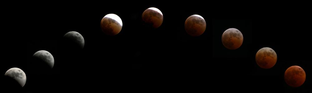 Blood Red.jpg