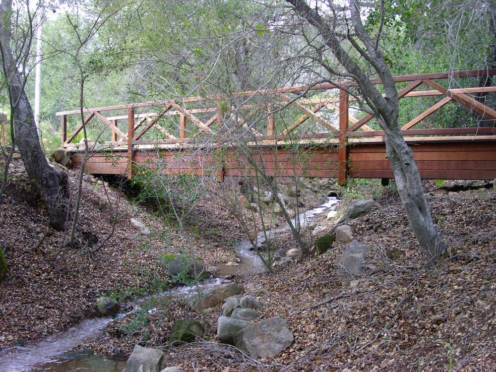 Backyard Bridge