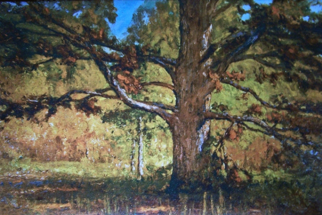 This is a painting by T C Steele, an early 20th Century painter. Agian, angular branches make the tree look solid.