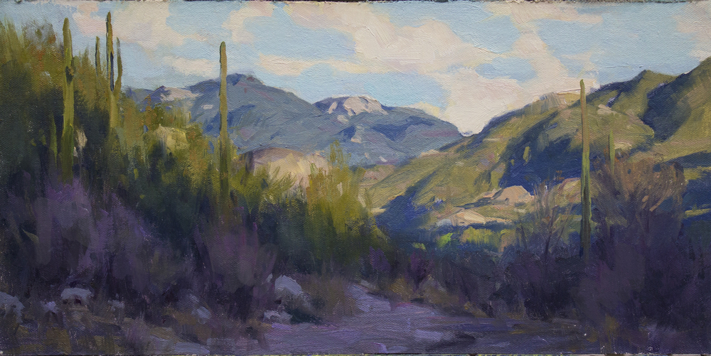 Late Afternoon, Catalina Mountains - oil