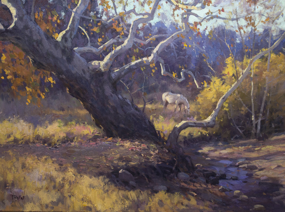 Sycamores Near Patagonia, AZ - oil - 18 x 24 - SOLD