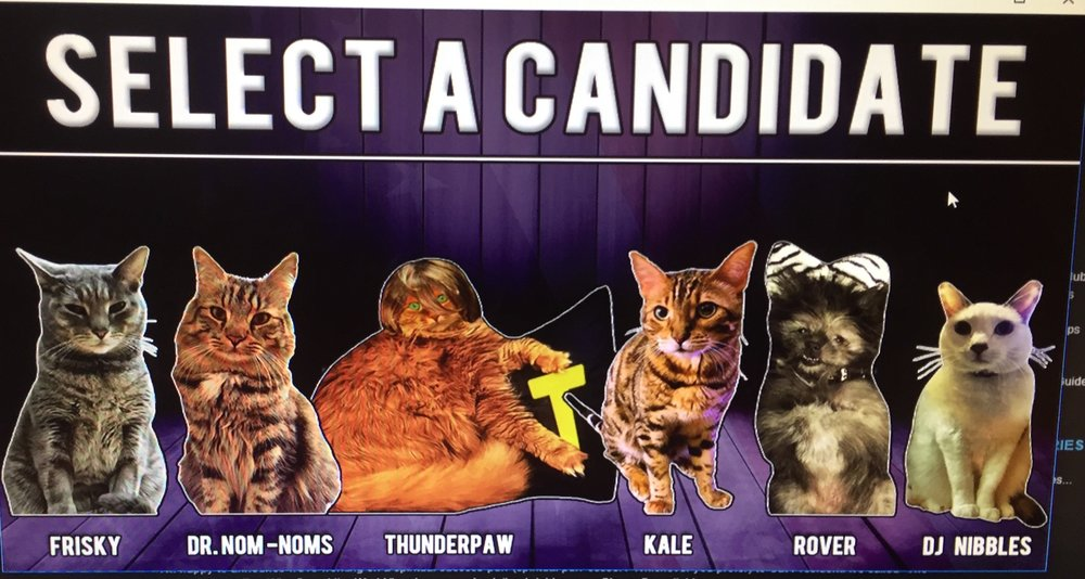 Cat president dating options
