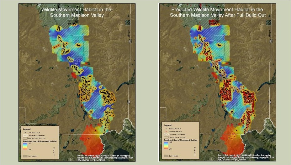 Estimating wildlife movement permeability. Dark blue areas are pinch points to movement. Panel on right indicates potential future development that could block wildlife movement.