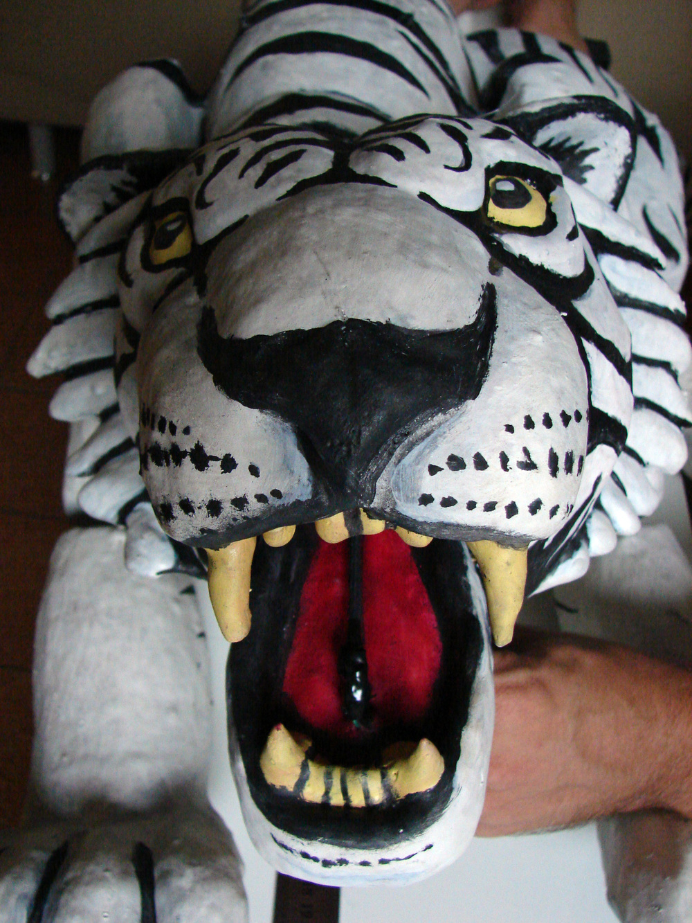 tiger_face_close.jpg