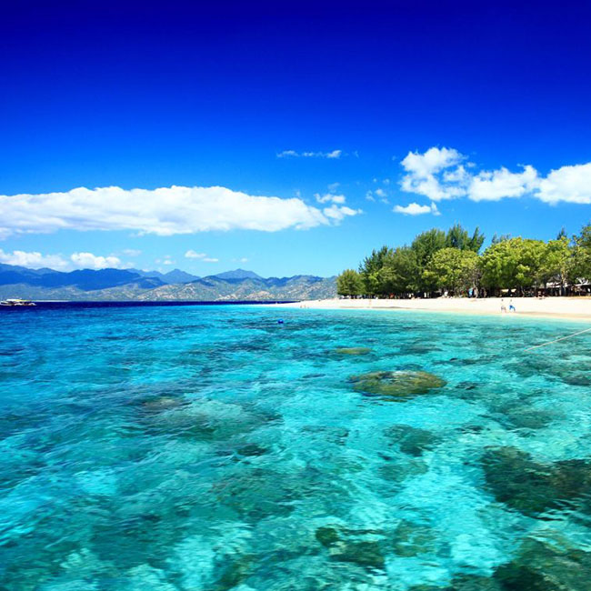 Dive central gili gili islands indonesia 5 dive resort offering padi courses and fun diving - Lombok dive resort ...