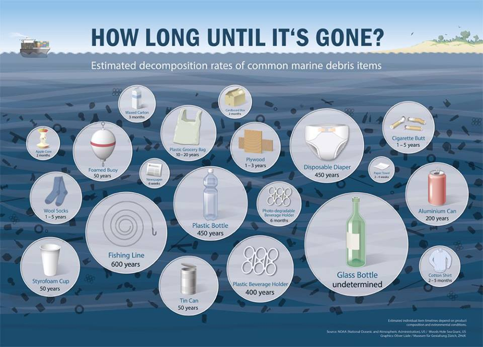 This graphic shows how long it takes for items that we use everyday to decompose. something to think about when we throw out our trash carelessly, without recycling