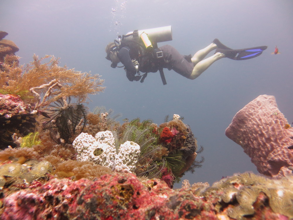 diving.gilit.scuba.buoyancy