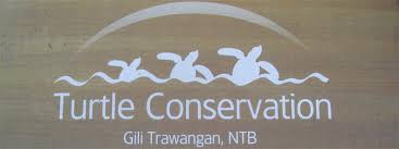 turtleconservationgilitrawangan