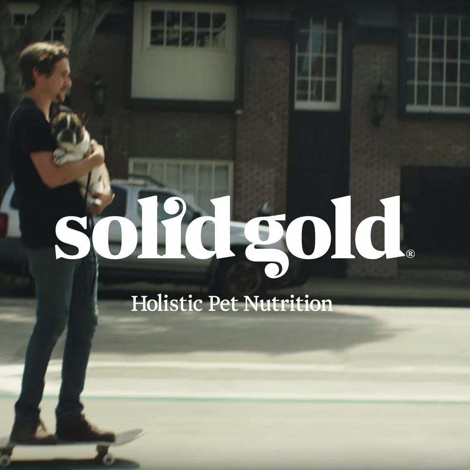 Solid Gold // Campaign 2015