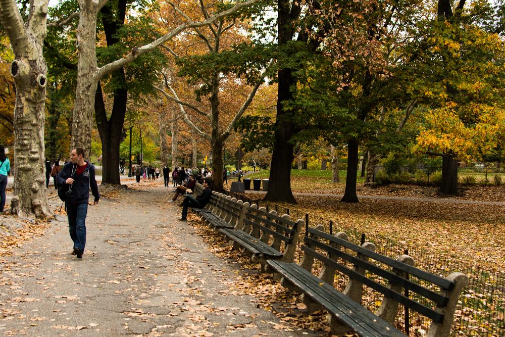NYC_2015_009.jpg