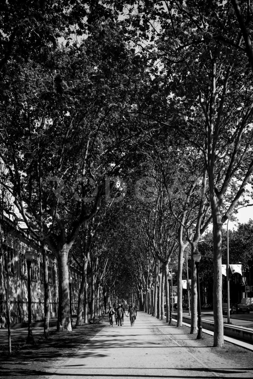 Web_Ciudades_BCN_008.jpg
