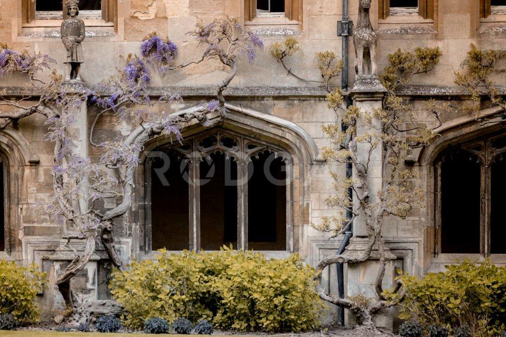 Web_Ciudades_Oxford_005.jpg