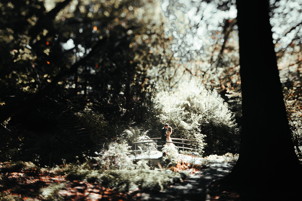 © Madeleine Bonin Photographer 2015-0255.jpg