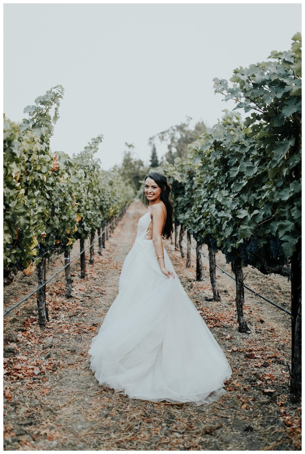 The Vintage Estates - Napa Valley - Yountville CA - Madeleine Frost Weddings-2172.jpg