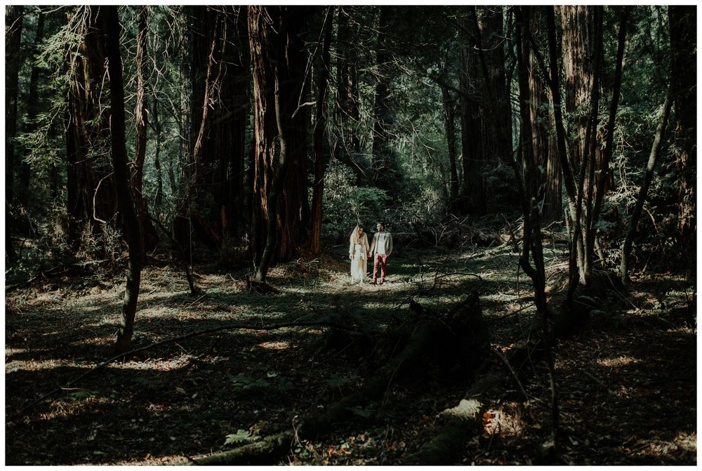 San Francisco - Muir Woods - China Beach Engagement Session -2003.jpg