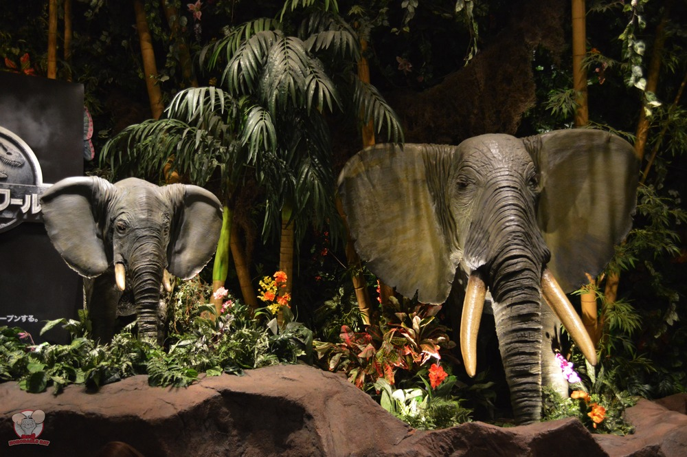Elephants to keep you company while you eat