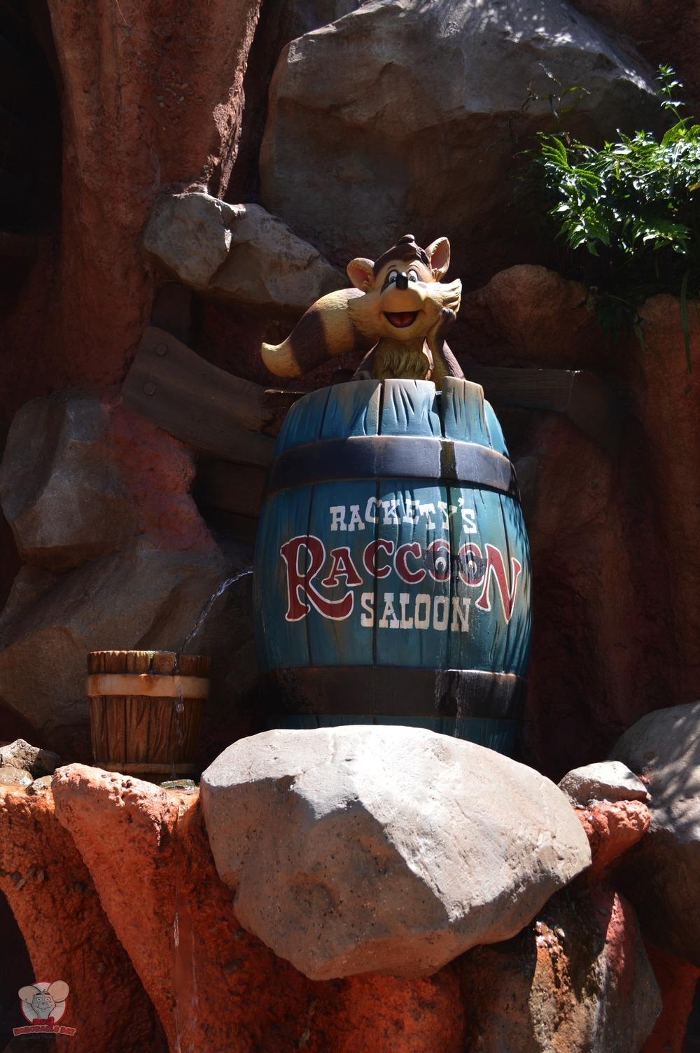 Rackety Raccoon hiding in a barrel