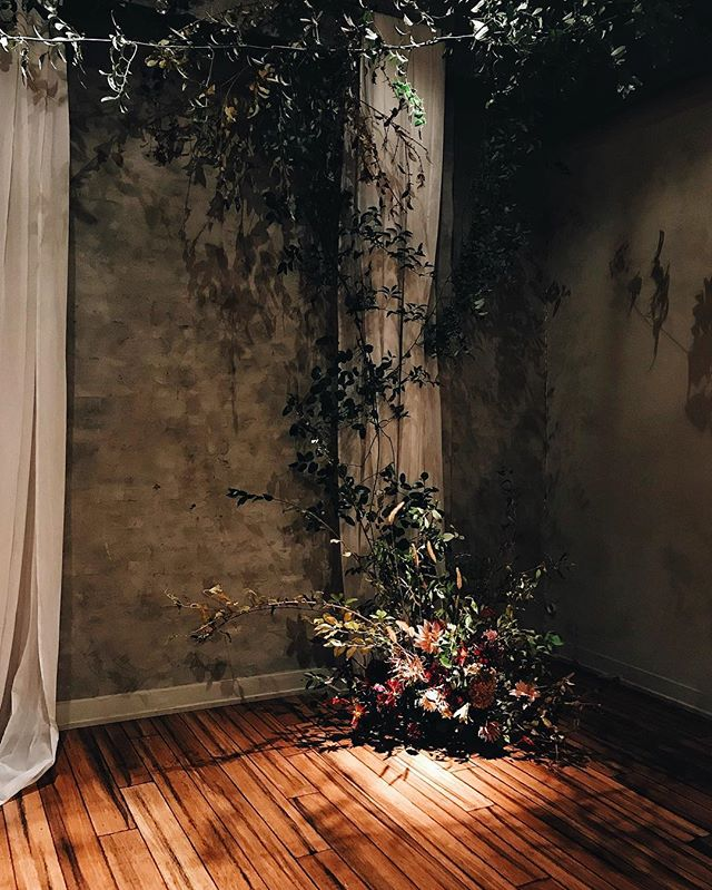 Dark and wild for Charly & Britt today with @ashnearth and @theereedfeed. Beautiful backdrop, compliments of one of my favorite venues in Philly.