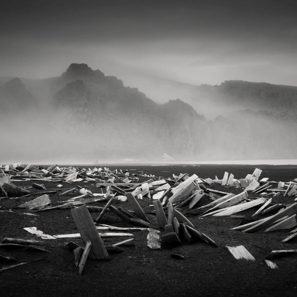 Image© Patrick Kaye :: All Rights Reserved
