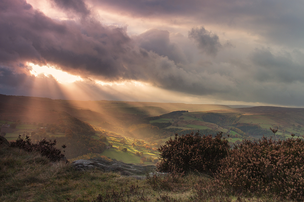 Evening Sun at Millstone Edge :: Alison Taylor :: all rights reserved