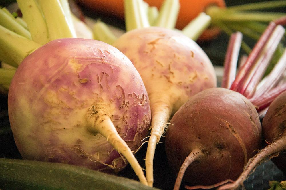 bw-4-turnip still life-ast.jpg