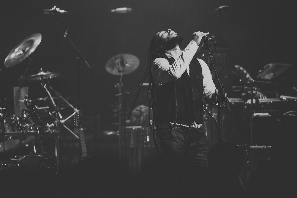 Ziggy Marley-2.jpg
