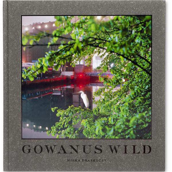 Gowanus_Wild_by_Miska_Draskoczy_perspective.jpg