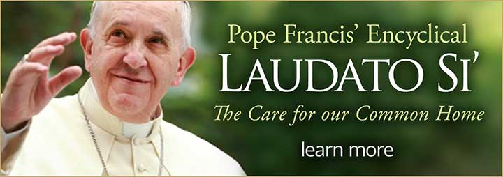 Pope Francis Laudato Si Immaculate Conception St. Joseph Parishes Catholic Church Chicago