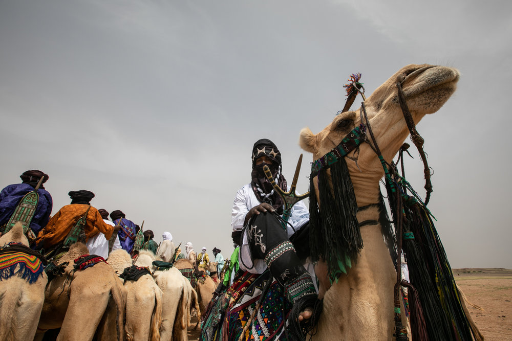 Tuareg people consider camels as a sacred element of their culture. They are fundamental during the travels through the harsh conditions of the desert, they are providers of nutritive milk essential for nomad families, and also inspiration for Tuareg's songs about revolution and freedom.