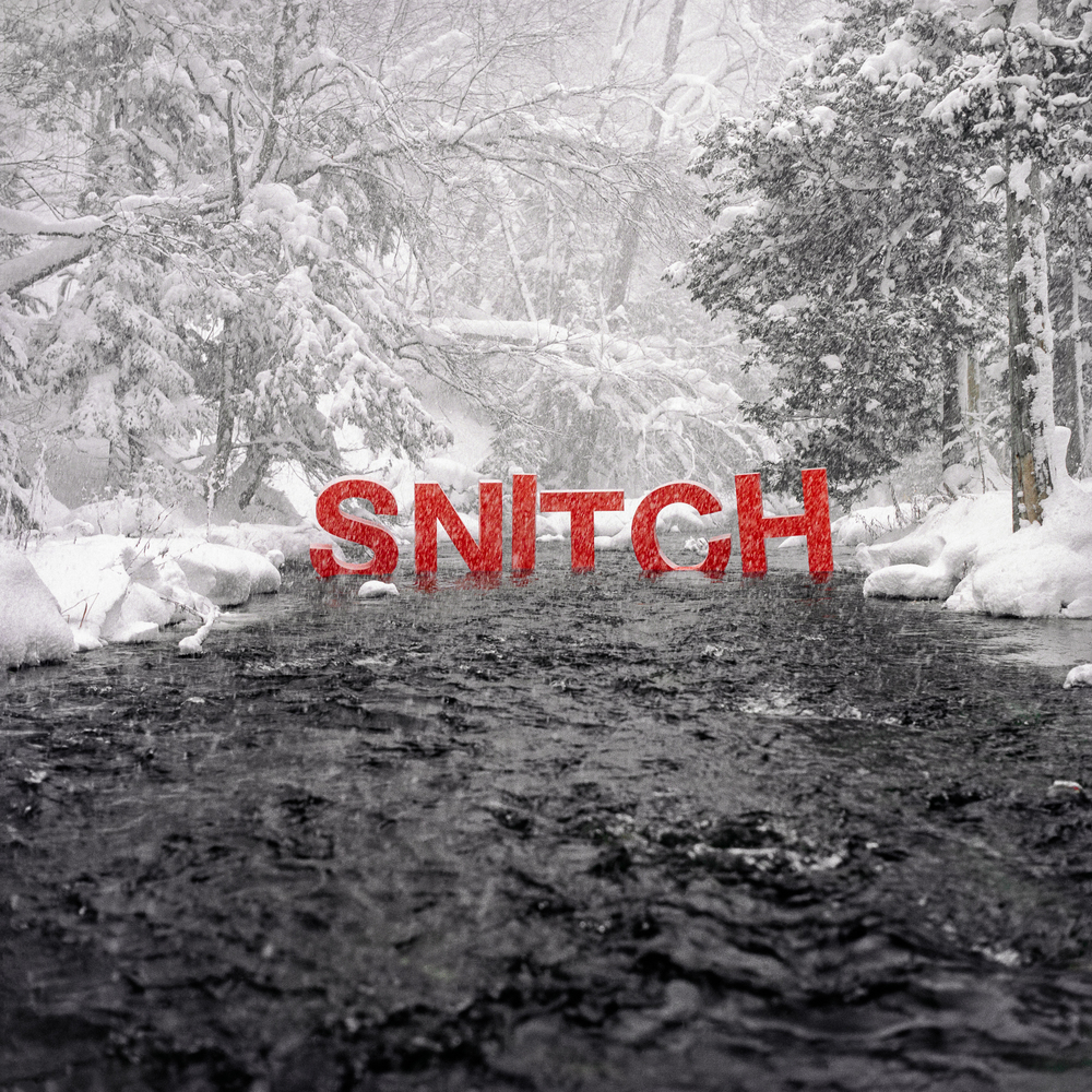 012. SNITCH FEATURE IMAGE.jpg
