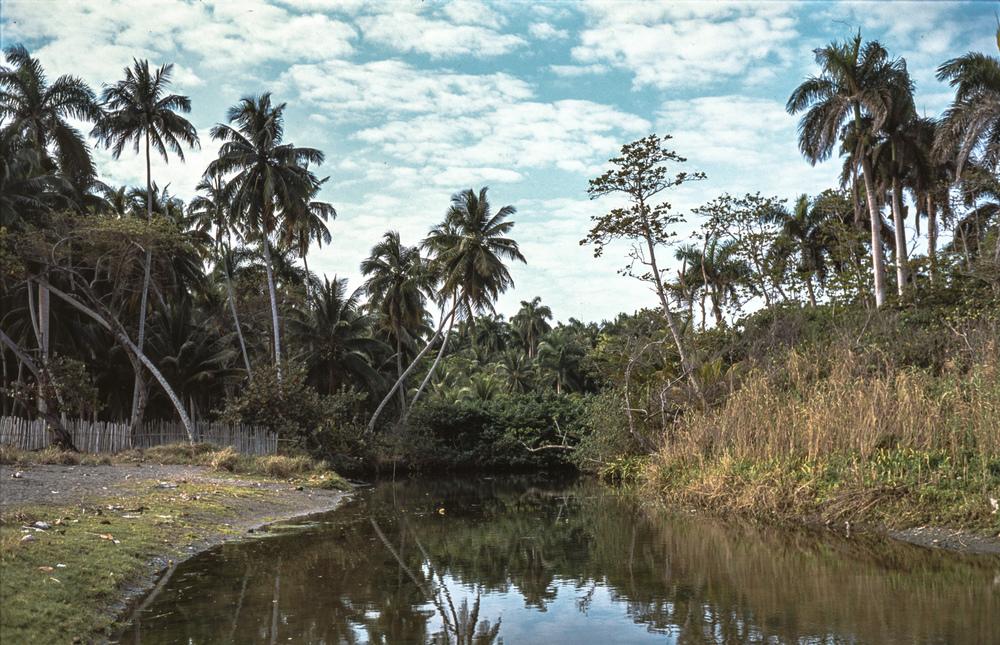 021 river_-2.jpg