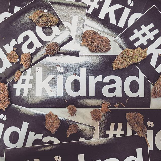 Happy Holidaze 🌿 Keep a bloodshot eye out for our Spring '17 collection dropping very soon 👌  #420 #kidrad #viceland #weedweek #blackberrykush #babaji #highlife #cannabiscommunity #urbanoutfitters #surfandskate