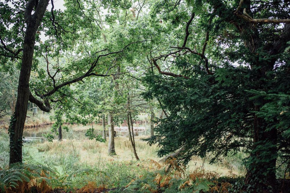 hayling-island-woodland-marquee-wedding-1.jpg