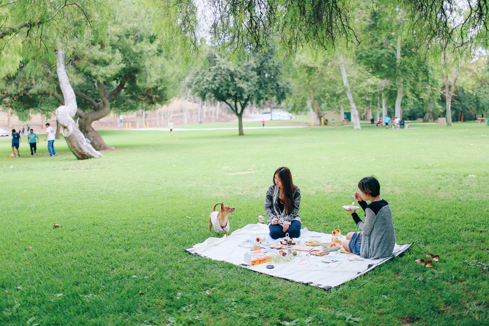 picnic_3
