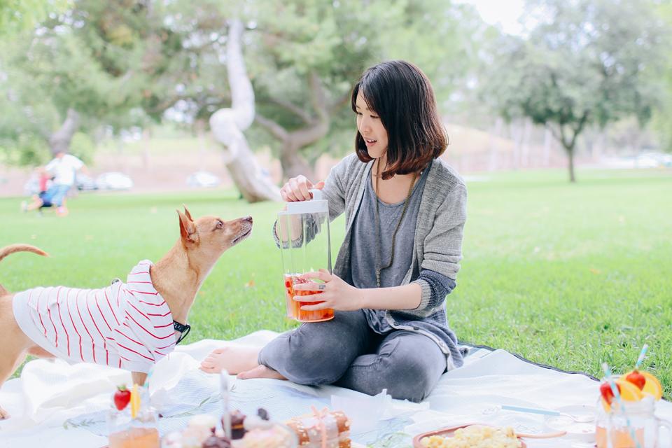 picnic_26