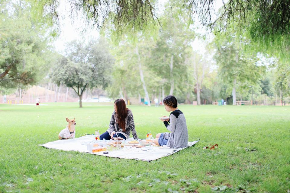 picnic_35