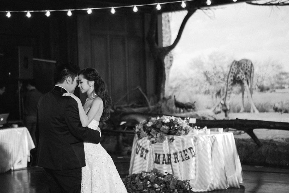 日誌+攝影photo diary◥ joy & michael wedding banquet // 與恐龍共飲 與動物共餐