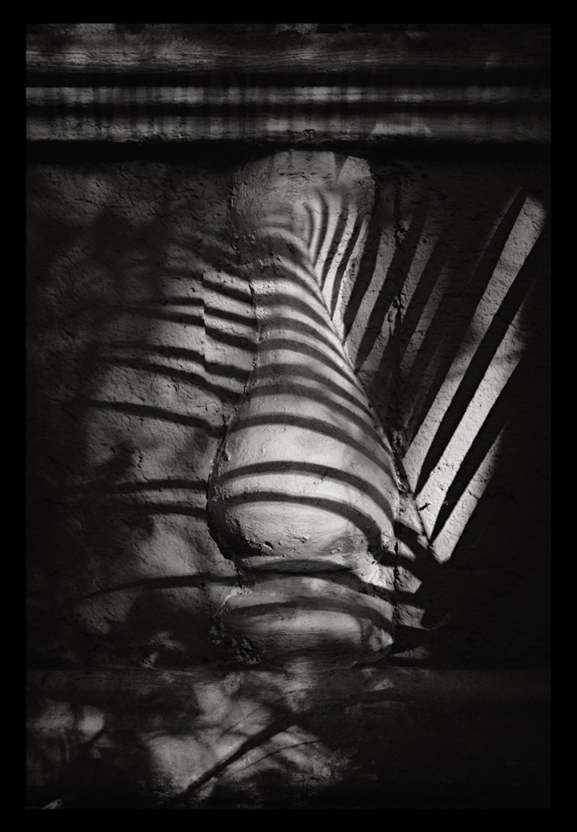 Pilaster with Palm Leaf Shadows, México 2010