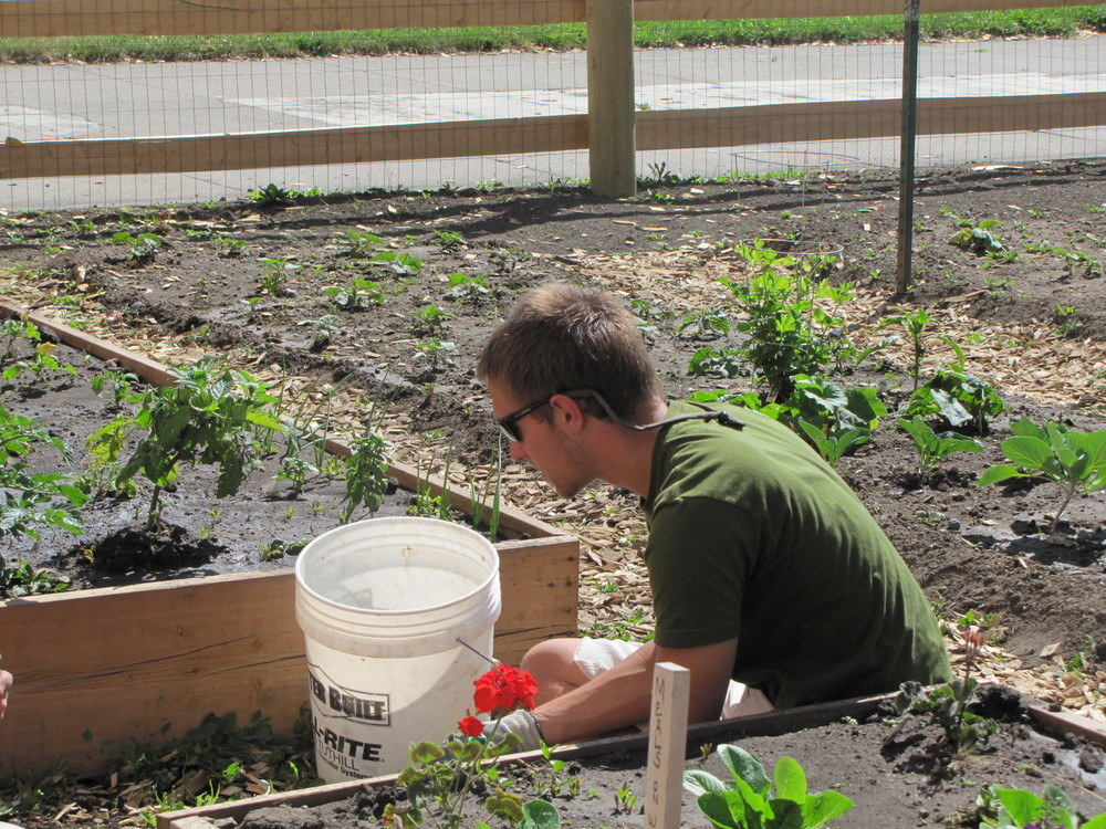 Zach Brown, 2011, as a member of 1K New Gardens, on a work day with the Bozone Ozone Bus at the Livingston Food Pantry Community Garden site.