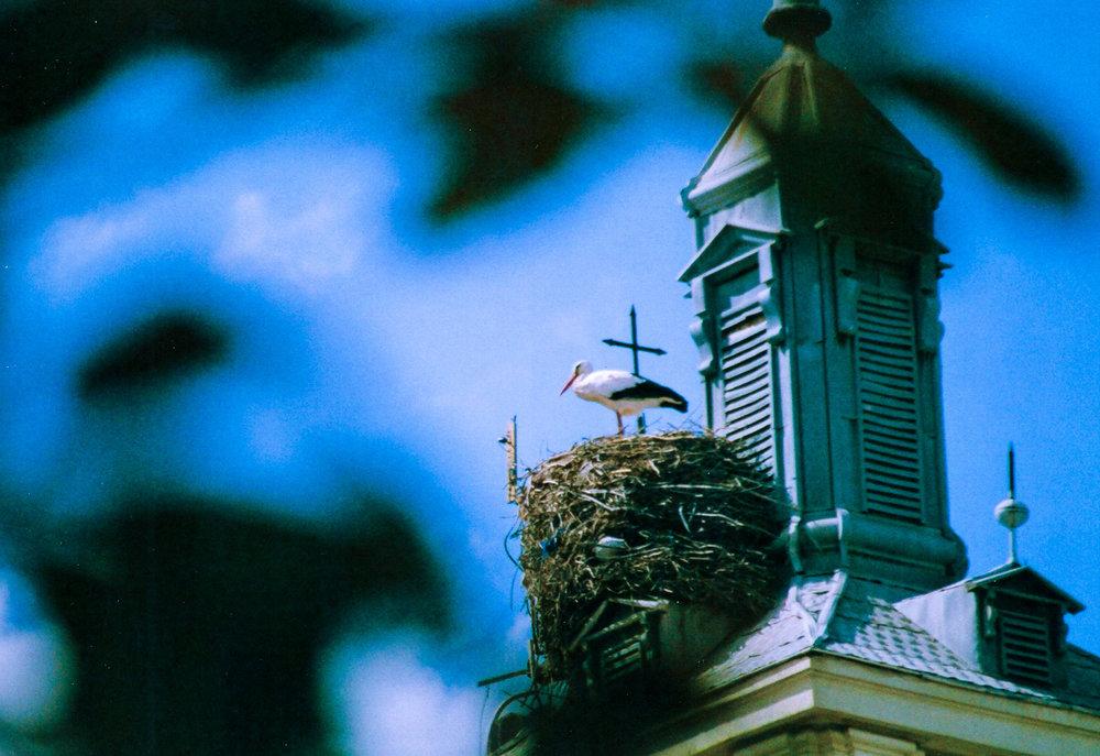 Canon EOS Test017.jpg